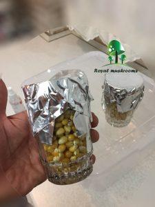 کشت کمپوستی قارچ - اسپور قارچ جادوویی گلدن تیچر