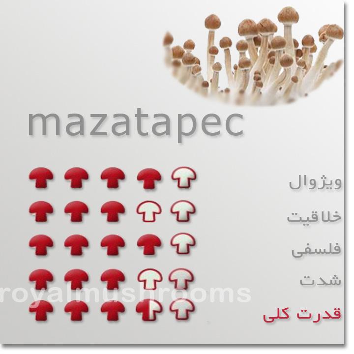 انواع نژاد قارچ های جادویی